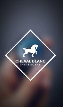 Les conseils Cheval Blanc Patrimoine