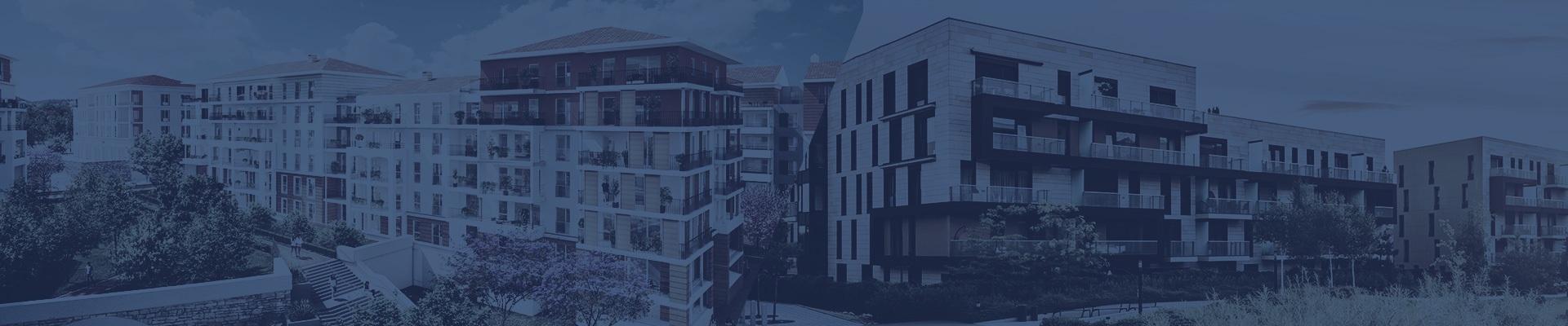 Investir En Immobilier Avec Le Regime Loueur Meuble Lmnp Lmp