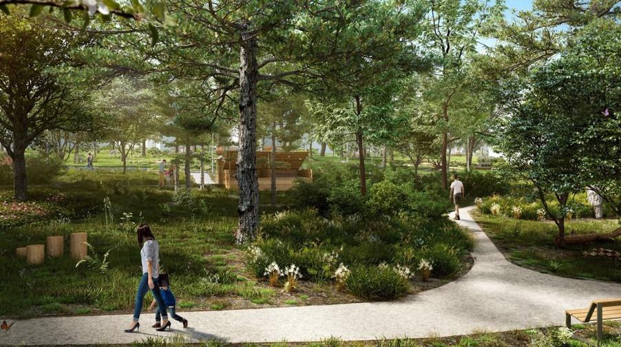 Les Sequoias_jardin