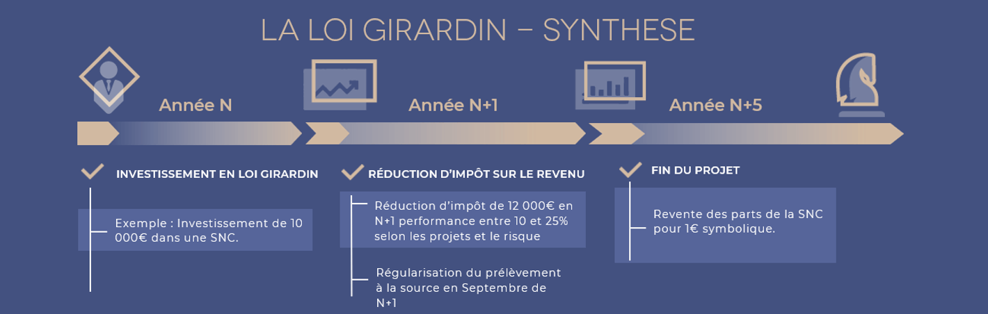 Exemple investissement Girardin